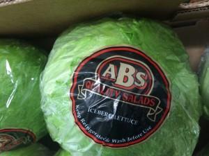 FreshCast FC-BR ABS